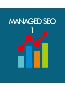 managed_seo_1